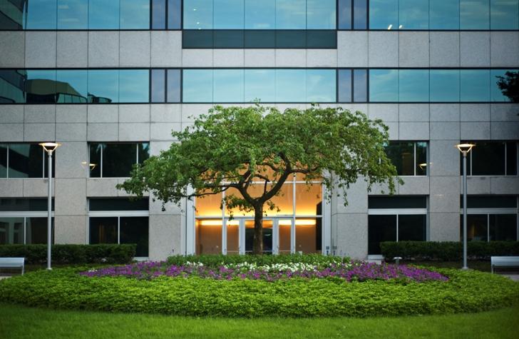 Eos Commercial Landscape Services
