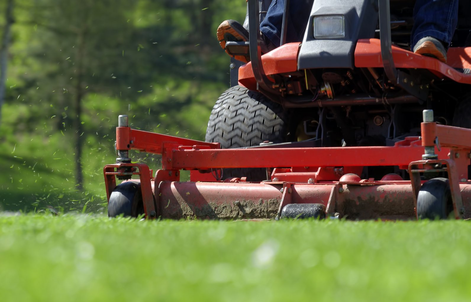 Residential Turf Management
