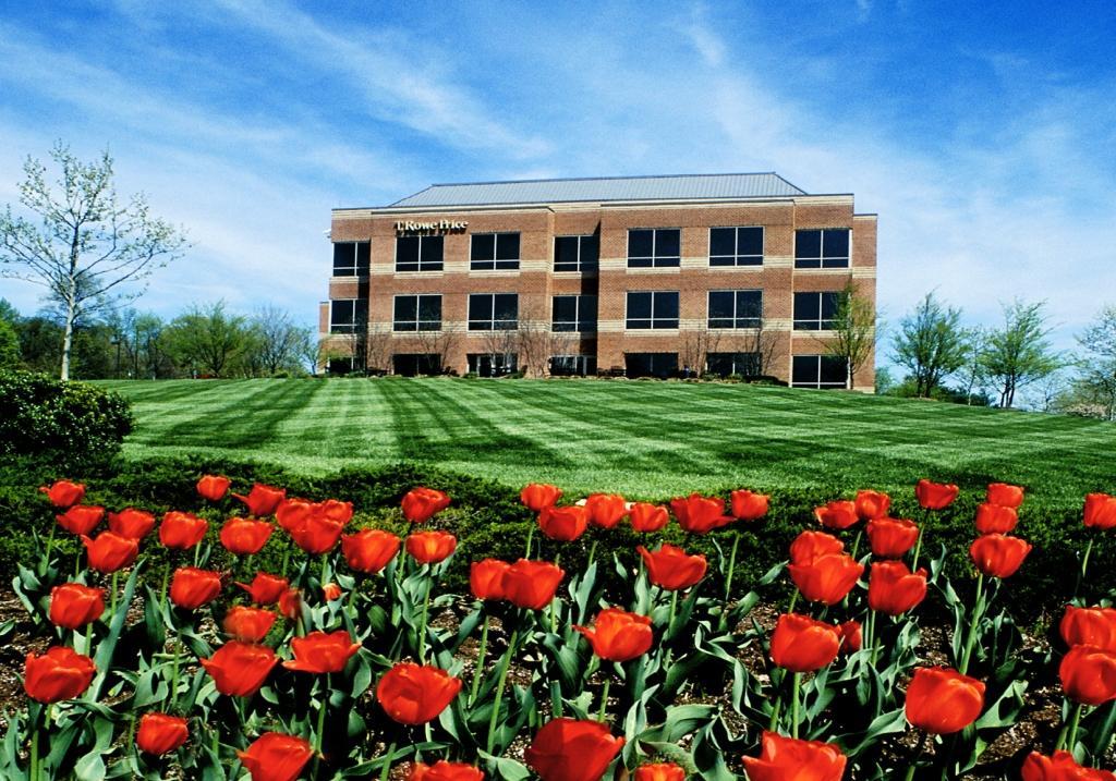 Commercial Landscape Services